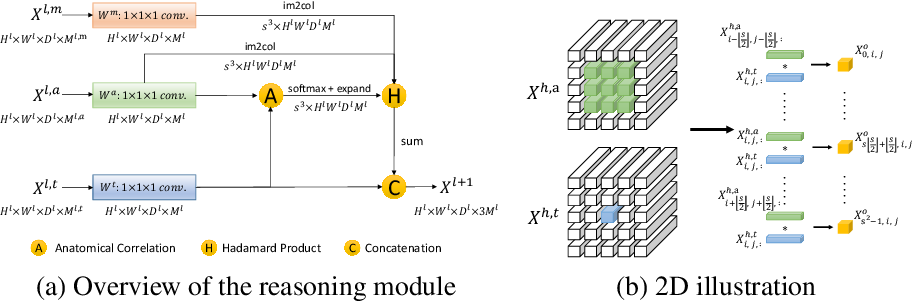 Figure 4 for Generalized Organ Segmentation by Imitating One-shot Reasoning using Anatomical Correlation