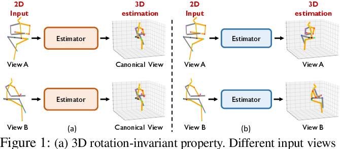 Figure 1 for Invariant Teacher and Equivariant Student for Unsupervised 3D Human Pose Estimation