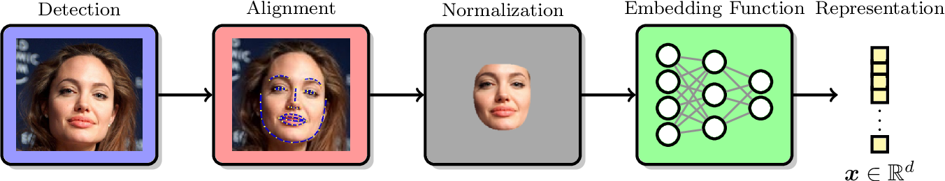 Figure 1 for On the Capacity of Face Representation