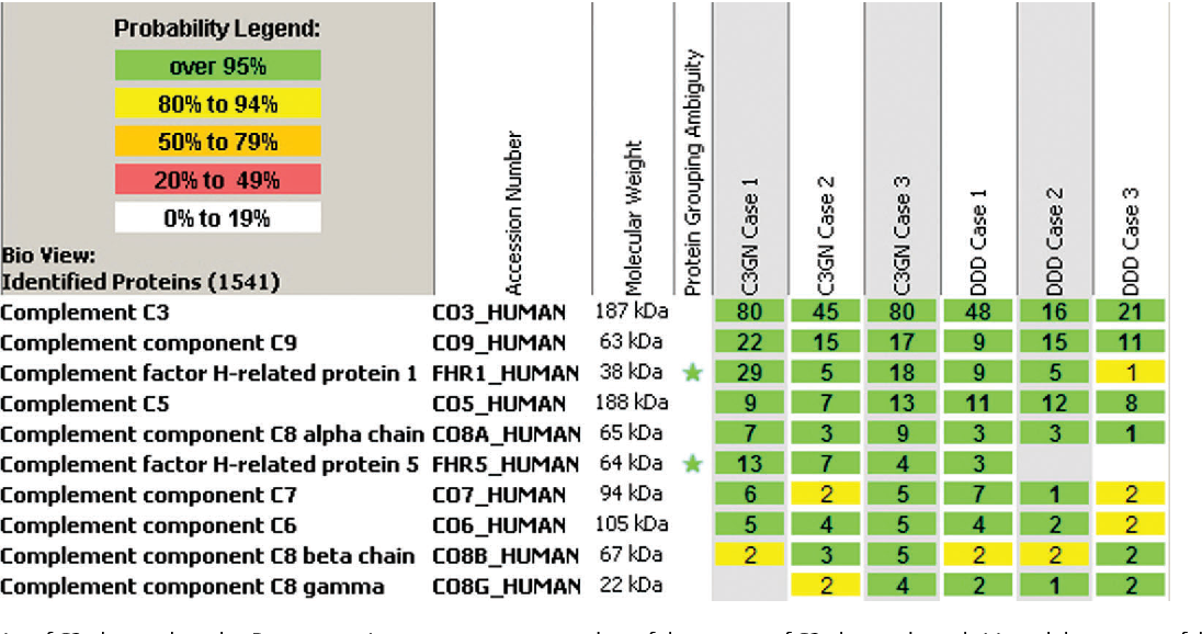 Figure 4 from Pathology of renal diseases associated with