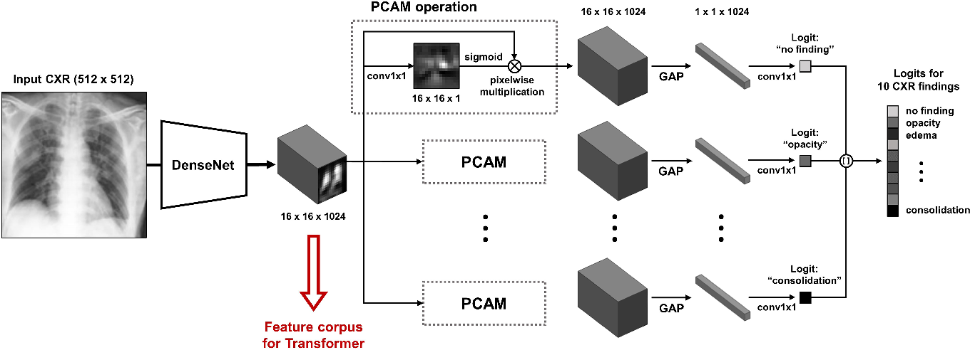 Figure 3 for Vision Transformer using Low-level Chest X-ray Feature Corpus for COVID-19 Diagnosis and Severity Quantification