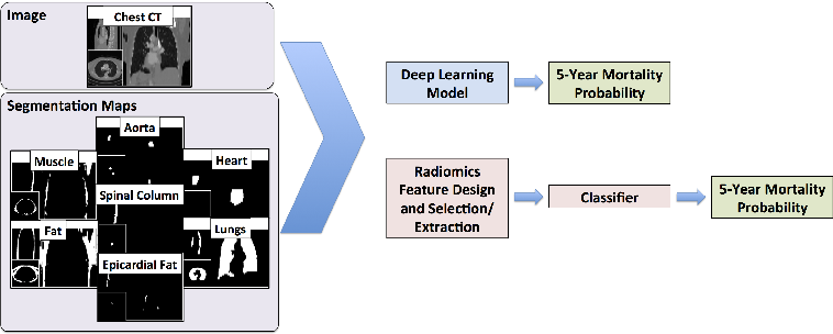 Figure 1 for Automated 5-year Mortality Prediction using Deep Learning and Radiomics Features from Chest Computed Tomography