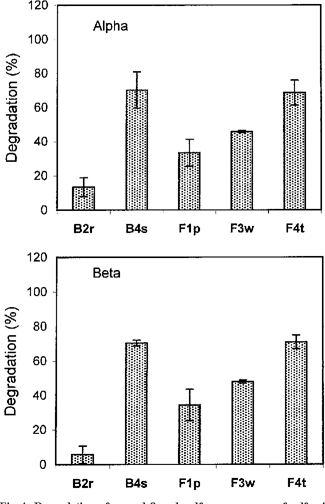 Fig. 4. Degradation of - and -endosulfan as a source of sulfur in The percentage identity of isolate F4 was 100% (0.00% a liquid culture by B2r, B4s, F1p, F3w, and F4t bacterial strains genetic difference [GD]). Based on the first 300 baseafter 15 d of incubation. pair of the variable D2 region of the LSU rRNA gene, the isolate is most closely related to Fusarium solani (99.69% ganisms (Table 4, Fig. 5). In observing bacterial growth identity) followed by Fusarium eumartii (98.75% idenamongst the three bacterial strains (BF2, B4, and Lin-3) tity). The phylogenetic neighbor joining tree of Fusargrown in FTW nutrient culture medium in response to ium ventricosum is presented in Fig. 6. endosulfan supplied as a sole source of carbon, the high-