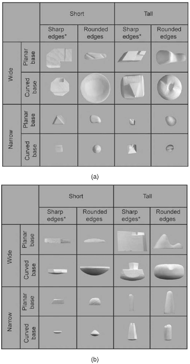 """Fig. 1. Experiment 1: Stimulus set of 16 unique objects. (a) Top view, (b) side view. """"*"""" indicates the eight smooth objects also used in Experiment 2."""