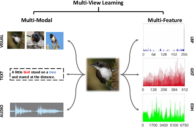 Figure 1 for Multi-view Deep Subspace Clustering Networks