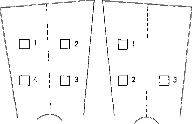 Fig. 1. Example of the localization of the fields on the thighs