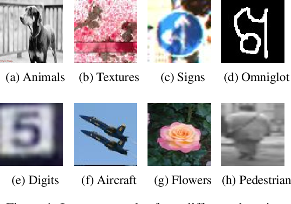 Figure 1 for Depthwise Convolution is All You Need for Learning Multiple Visual Domains