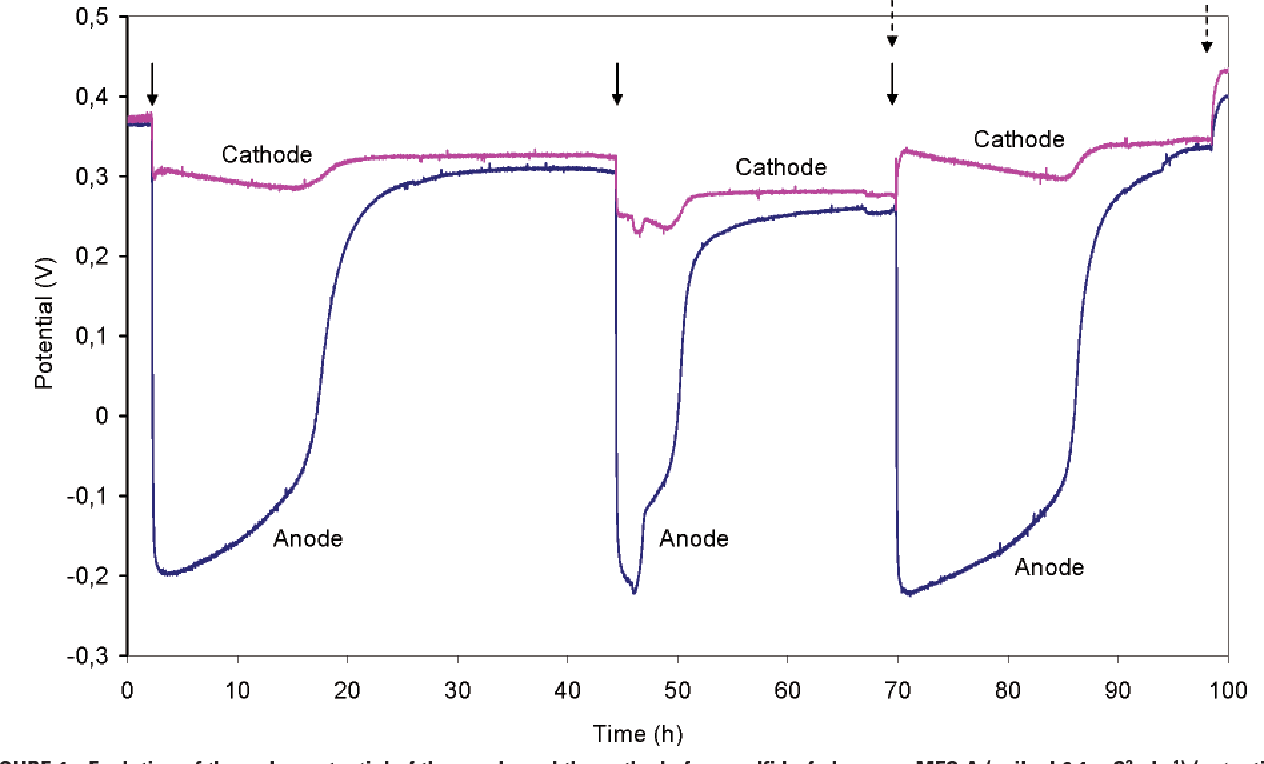 Figure 1 from Microbial fuel cells for sulfide removal  - Semantic
