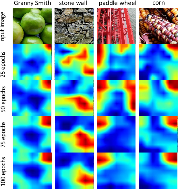 Figure 1 for SelectScale: Mining More Patterns from Images via Selective and Soft Dropout